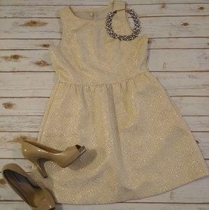 frenchi Gold/Cream Dress